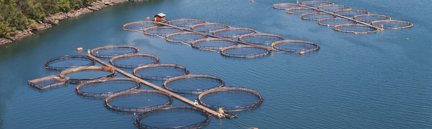 Aquaculture pen and cage liners